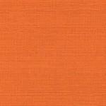 kashmir arancio